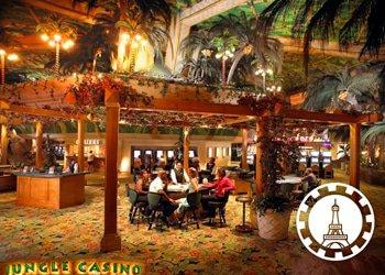 jungle-casino