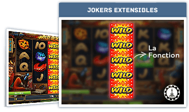 La Fonction : Jokers Extensibles