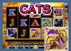 Machine à sous Téléchargeable Cats